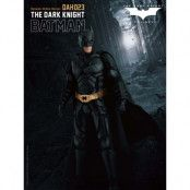 Batman: The Dark Knight - Batman - Dynamic 8ction Heroes